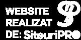 WEBSITEREALIZATDE